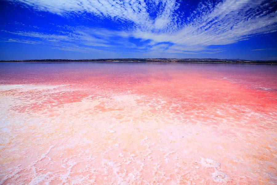 Фото Соленое розовое озеро в Торревьеха, Испания