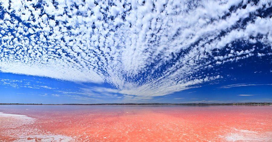 розовое озеро в Испании в Торревьеха польза