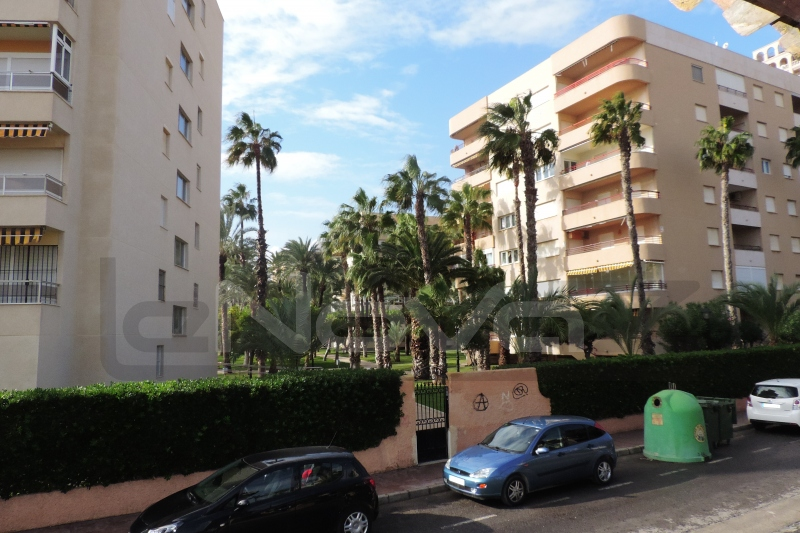 Photo Commercial property in Torrevieja