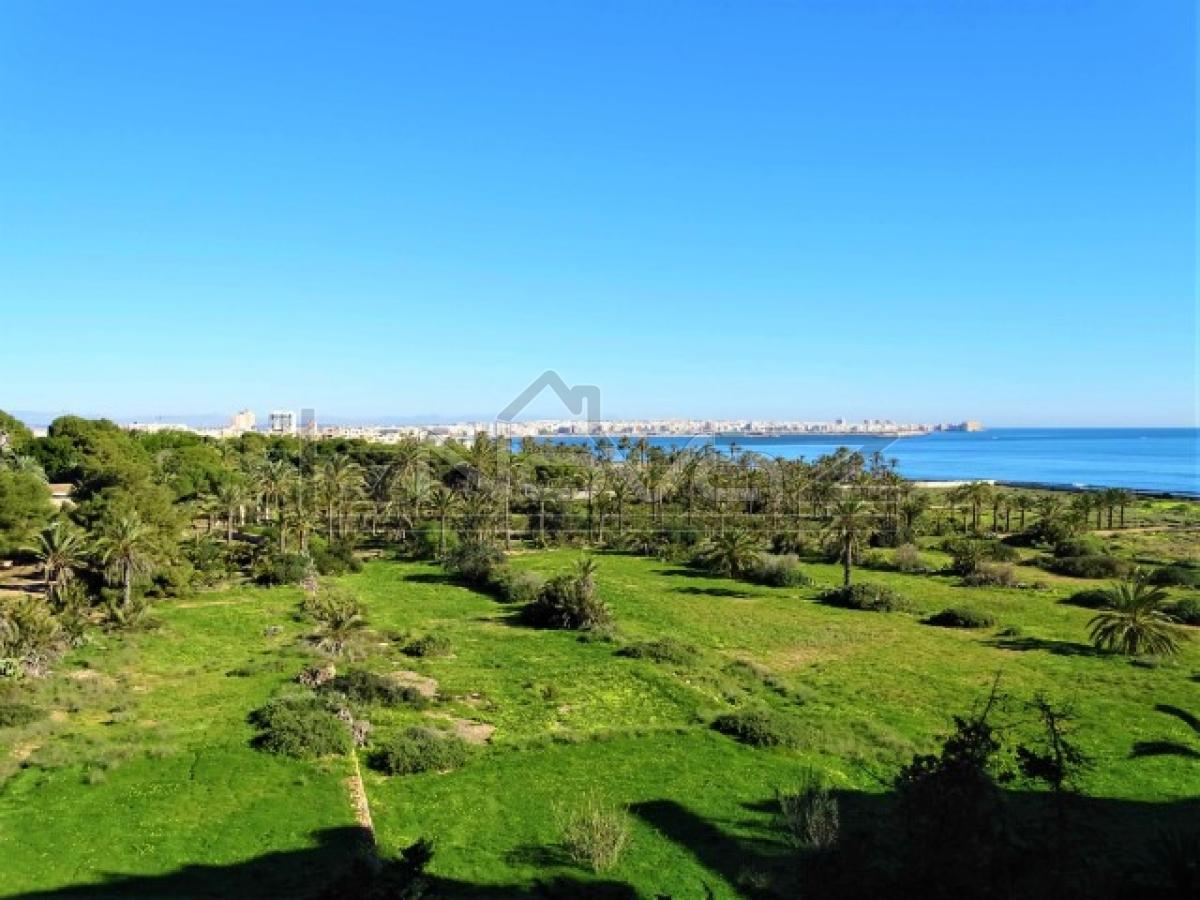 Foto de stock Apartamento en Punta Prima con vista al mar